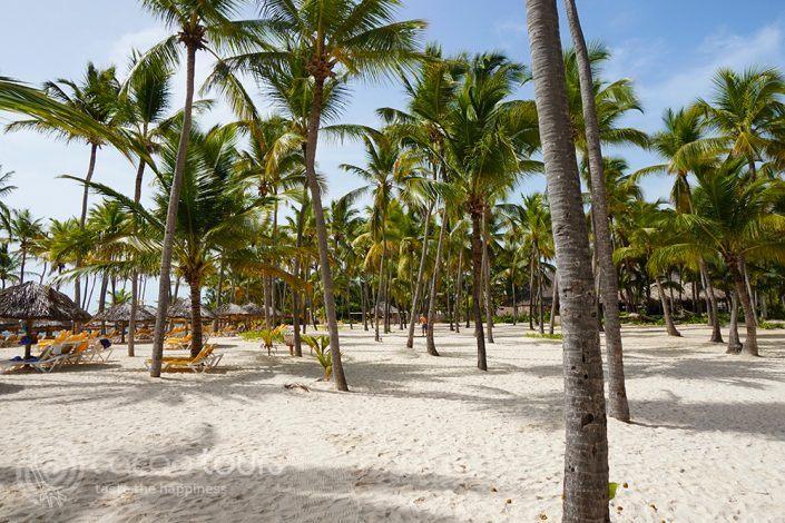 Плажът на Catalonia Bavaro Beach Resort Punta Cana