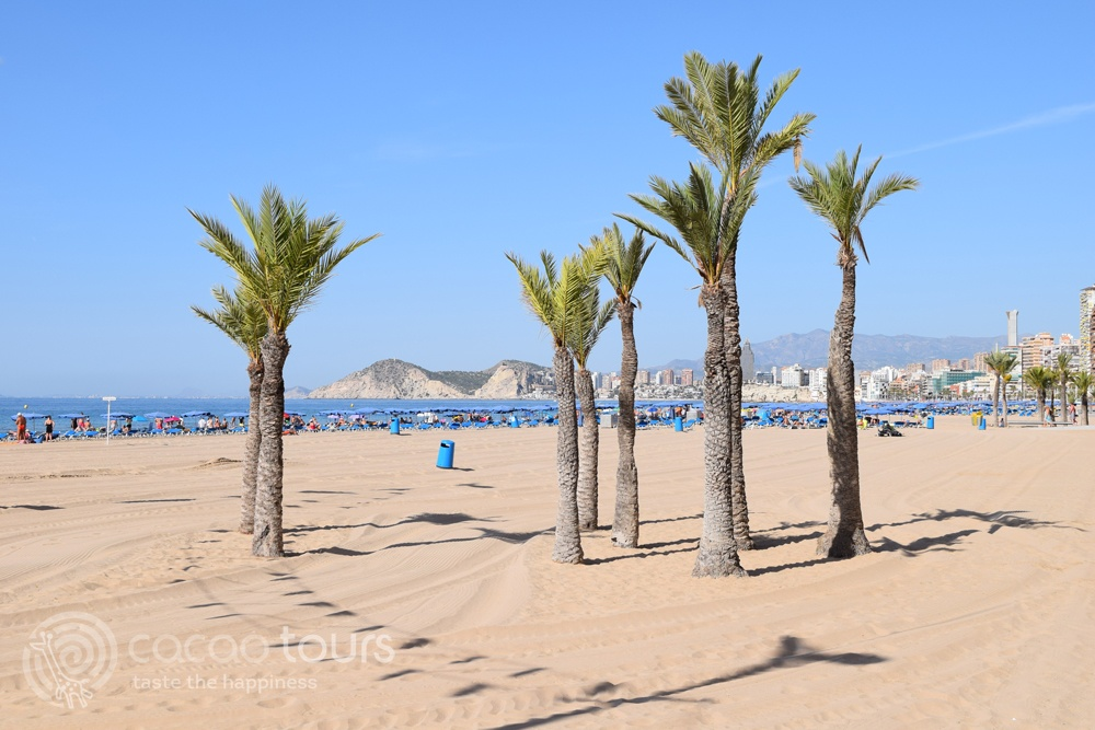 плажовете на Бенидорм, Аликанте, Испания (Benidorm, Alicante, Spain)