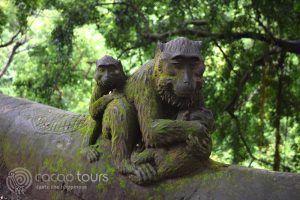 гората на маймуните, Убуд, о-в Бали, Индонезия