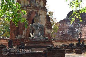 буда, Ват Махатат, Аютая, Тайланд