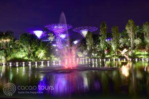 светлинно шоу, Градините на залива, Сингапур