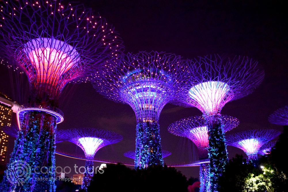 светлинно шоу в Gardens by the Bay, SuperTree Grove, Сингапур (Singapore), Singapore