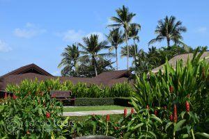 градината на Impiana Resort, Чауенг Ной, Ко Самуи, Тайланд