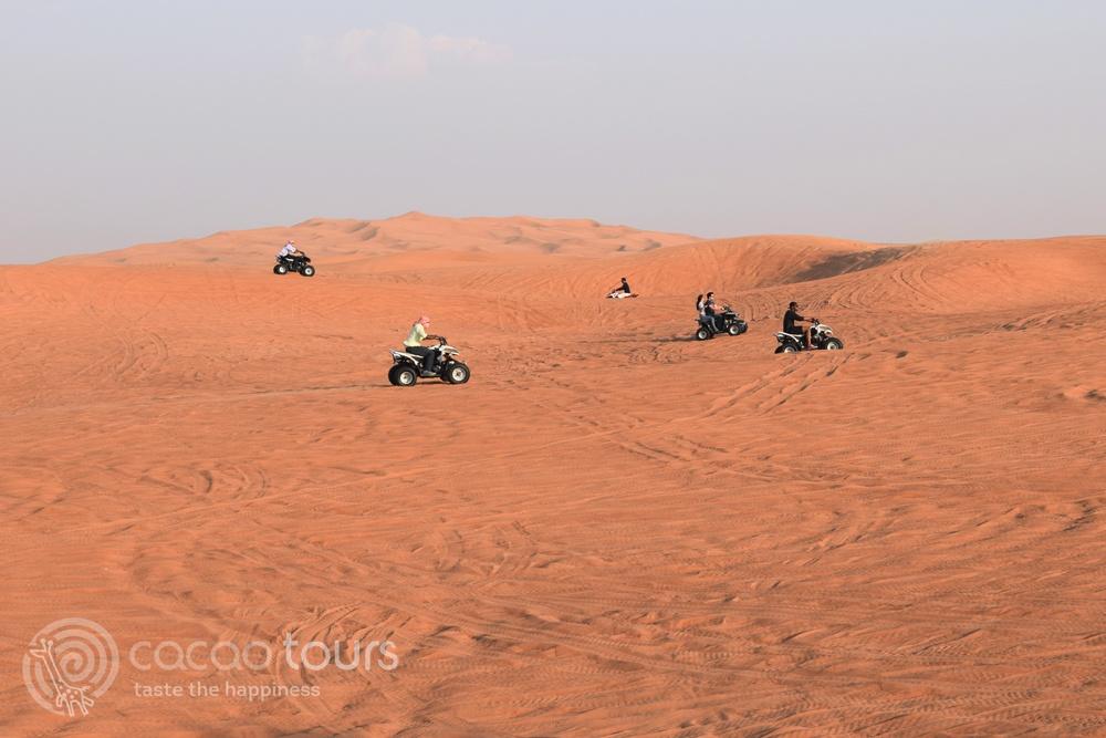 сафари в Арбската пустиня (Eastern Desert), Дубай, ОАЕ (Dubai, UAE)