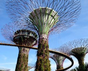 нощен Сингапур