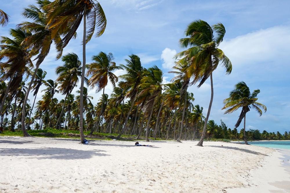 Saona Islanda, Punta Cana, Dominicana