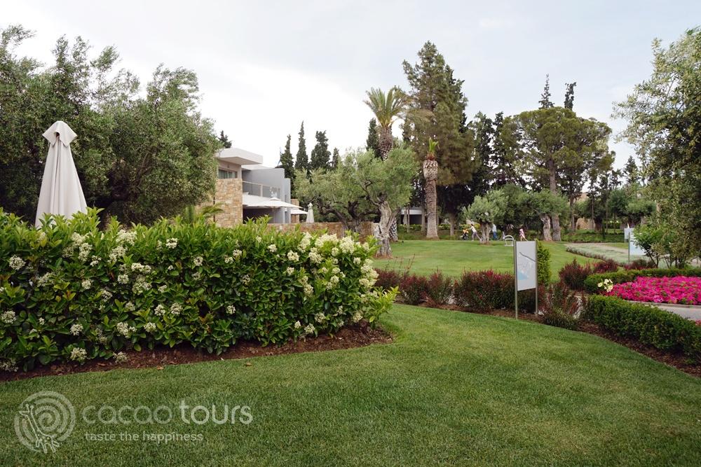 Топ хотел сред хотелите на Халкидики и Олимпийска ривиера - Ikos Olivia, Halkidiki, Greece
