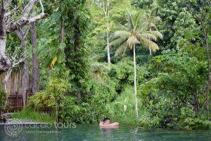 басейнът на хотел в Убуд, Бали, Индонезия