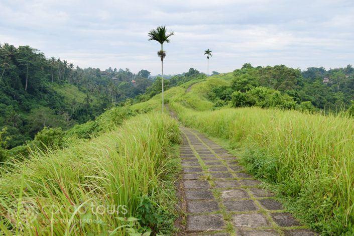Убуд, Бали, Индонезия