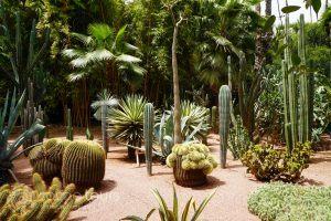 Majorelle Garden, Marrakech, Morocco