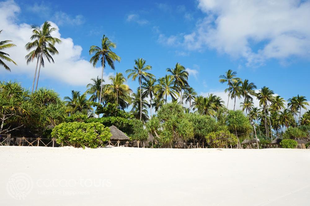 Белите плажове на Занзибар, Танзания (Zanzibar, Tanzania) - романтичен декор за сватбена церемония в чужбина