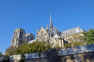 """Катедралата """"Нотр Дам де Пари"""", Париж, Франция"""