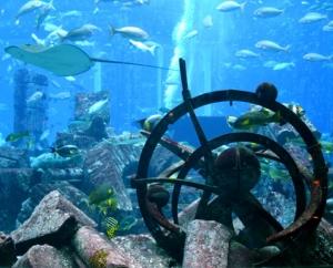 Аквариуми в цял свят - Lost Chambers Aquarium, Дубай