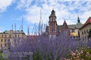 Замъкът Вавел, Полша