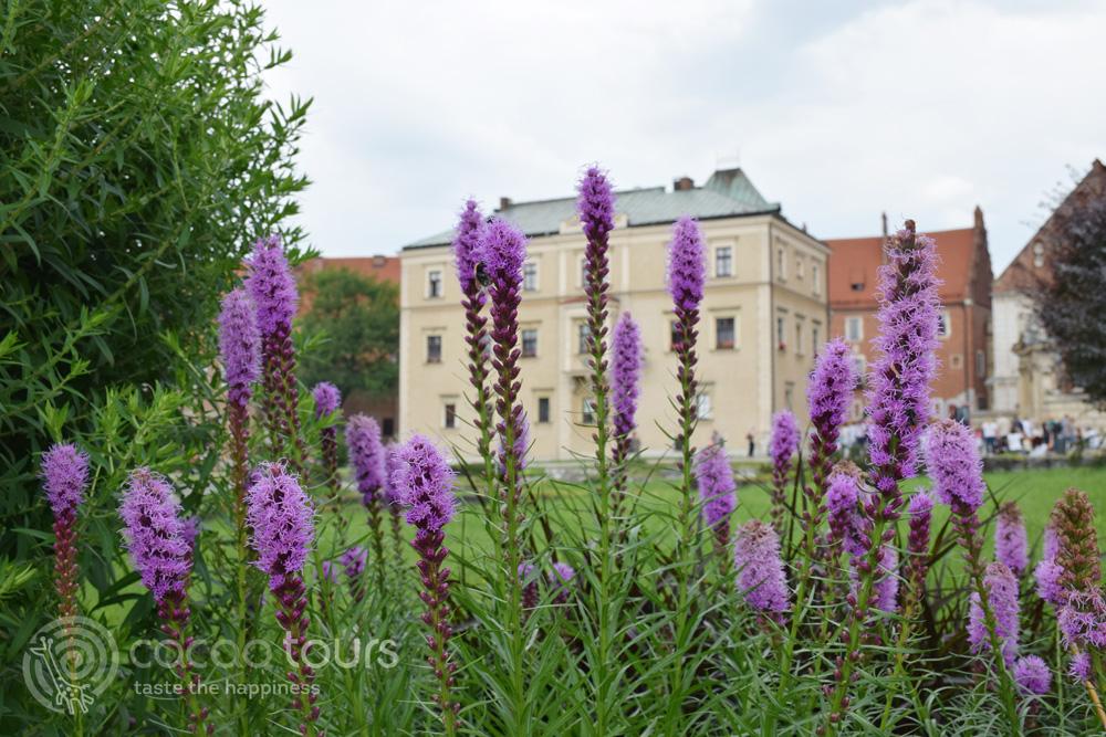 Замъкът Вавел в Краков, Полша